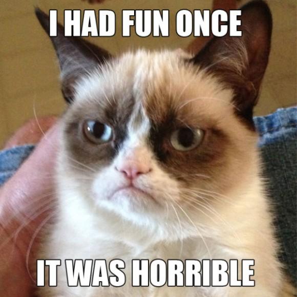 funny_grumpy_cat_meme_selection_640_01