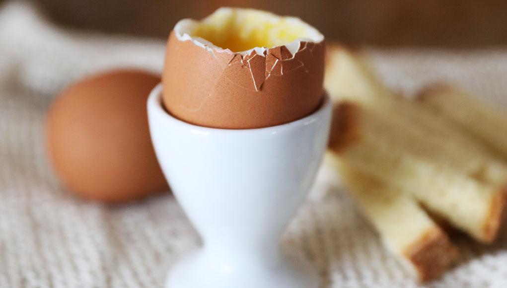 È nato prima l'uovo o il Runlovers?